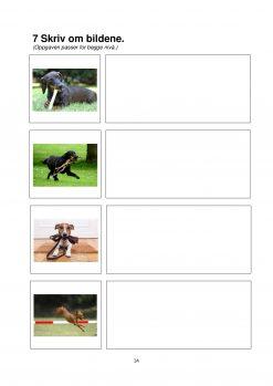 Fokus på skriving - hefte 2 - Gutt koser med hund - Tekst 1A side 4