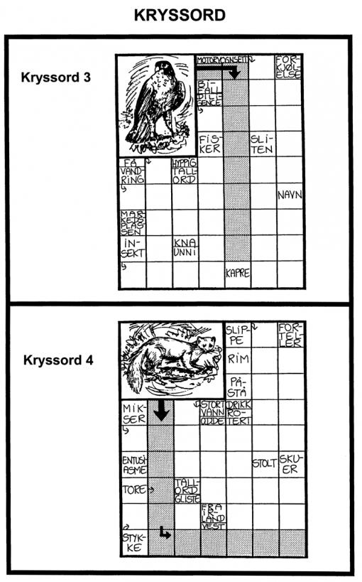 Kryssord - 3-4