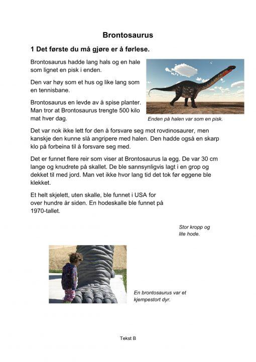 Lesestrategier og lesetrening i fagtekster - Brontosaurus, B, Hefte 2, BM_1