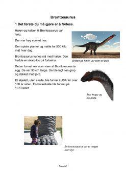 Lesestrategier og lesetrening i fagtekster - Brontosaurus, C, Hefte 2, BM_1