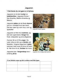 Lesestrategier og lesetrening i fagtekster - Jaguaren, B, Hefte 1, BM_1