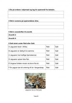 Lesestrategier og lesetrening i fagtekster - Jaguaren, B, Hefte 1, BM_2