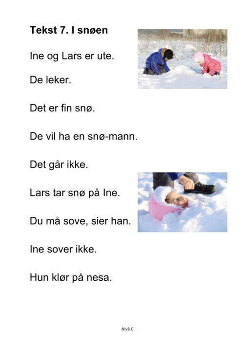 Alle må lese mye - Hefte 5 - Tekst 7. I snøen. Nivå C_1